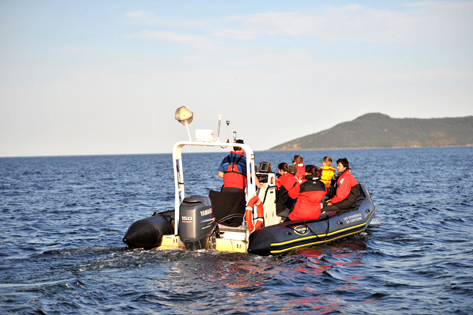 Croisieres aux baleines - Quoi faire sur la Cote-Nord - duplessis - Attrait - Tourisme Cote-Nord - Destination Cote-Nord